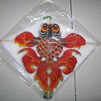 Click to view details for Kites (1507743)