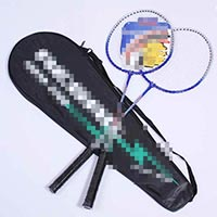 Click to view details for Badminton (1511980)