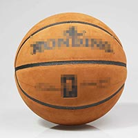 Click to view details for Basketballs (1512303)