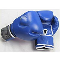 Click to view details for Boxing Equipment (1512826)