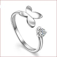 Click to view details for Rings (1557949)