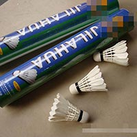 Click to view details for Badminton (1569606)