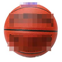 Click to view details for Basketballs (1569684)