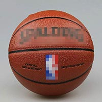 Click to view details for Basketballs (1569706)
