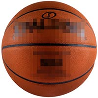 Click to view details for Basketballs (1569711)