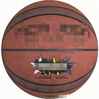 Click to view details for Basketballs (1569715)
