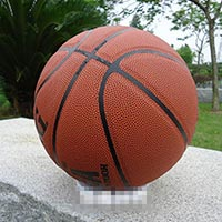 Click to view details for Basketballs (1569722)