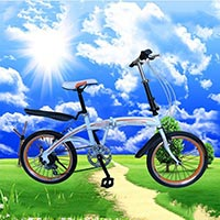 Click to view details for Bicycles (1569892)