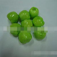 Click to view details for Artificial Fruit (1570847)