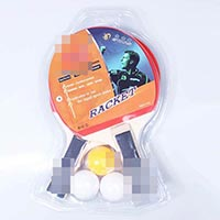 Click to view details for Table Tennis (1575652)