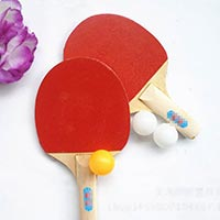 Click to view details for Table Tennis (1575653)