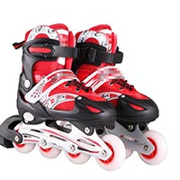 Click to view details for Skate Shoe (1576272)