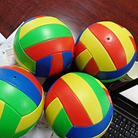 Click to view details for Volleyballs (1579153)