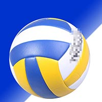 Click to view details for Volleyballs (1579155)