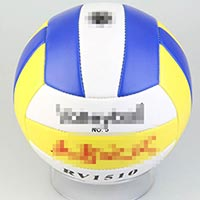 Click to view details for Volleyballs (1579156)