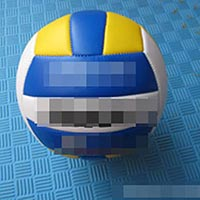 Click to view details for Volleyballs (1579186)