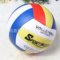 Click to view details for Volleyballs (1579188)