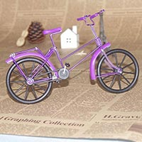 Click to view details for Craft Model (1581527)