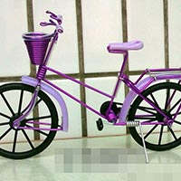 Click to view details for Craft Model (1581528)