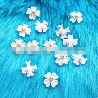 Click to view details for Resin Craft (1735835)