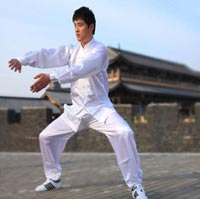 Click to view details for Martial Art (1738302)