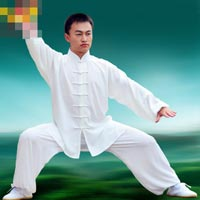Click to view details for Martial Art (1738317)