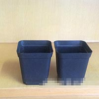 Click to view details for Flower Pot (1774470)