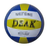 Click to view details for Volleyballs (1802925)